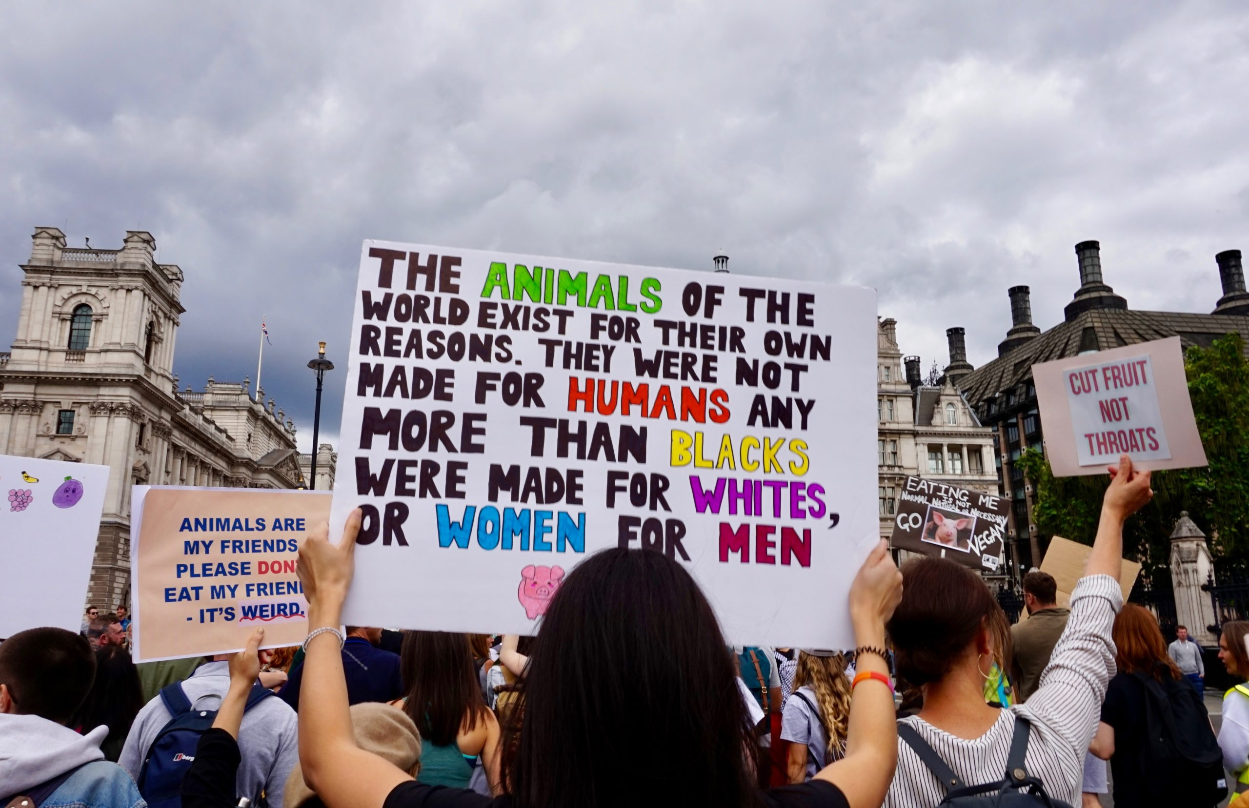 Vegan placard at the Animal Rights March, London