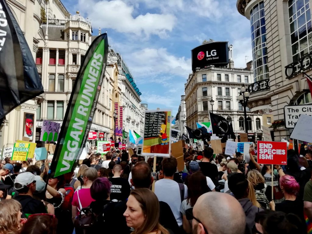 Vegan crowds on the Official Animal Rights March, London