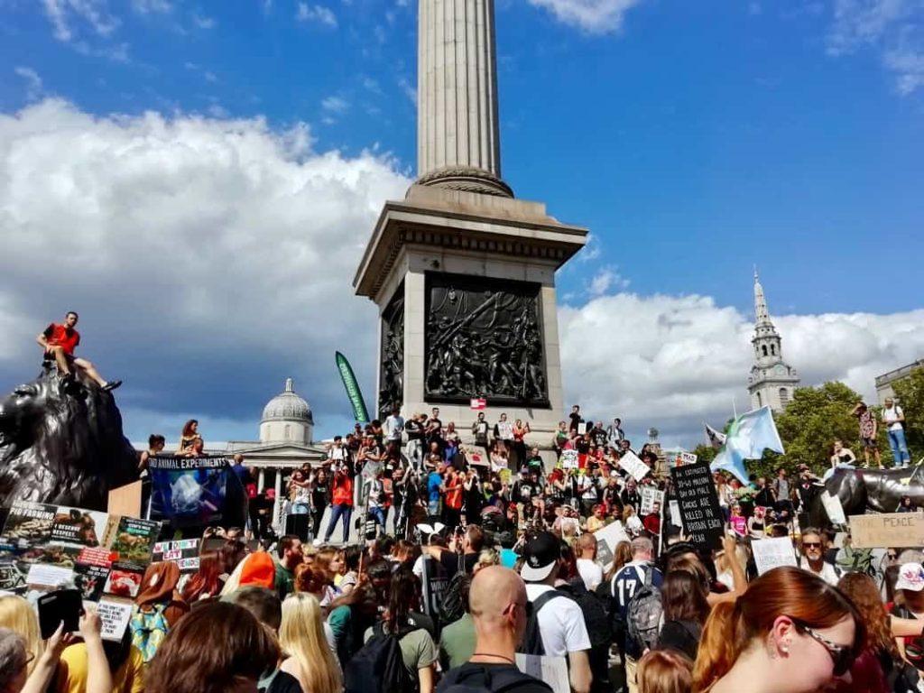 Animal Rebellion blockading Trafalgar Square, London
