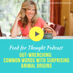 Food for Thought podcast
