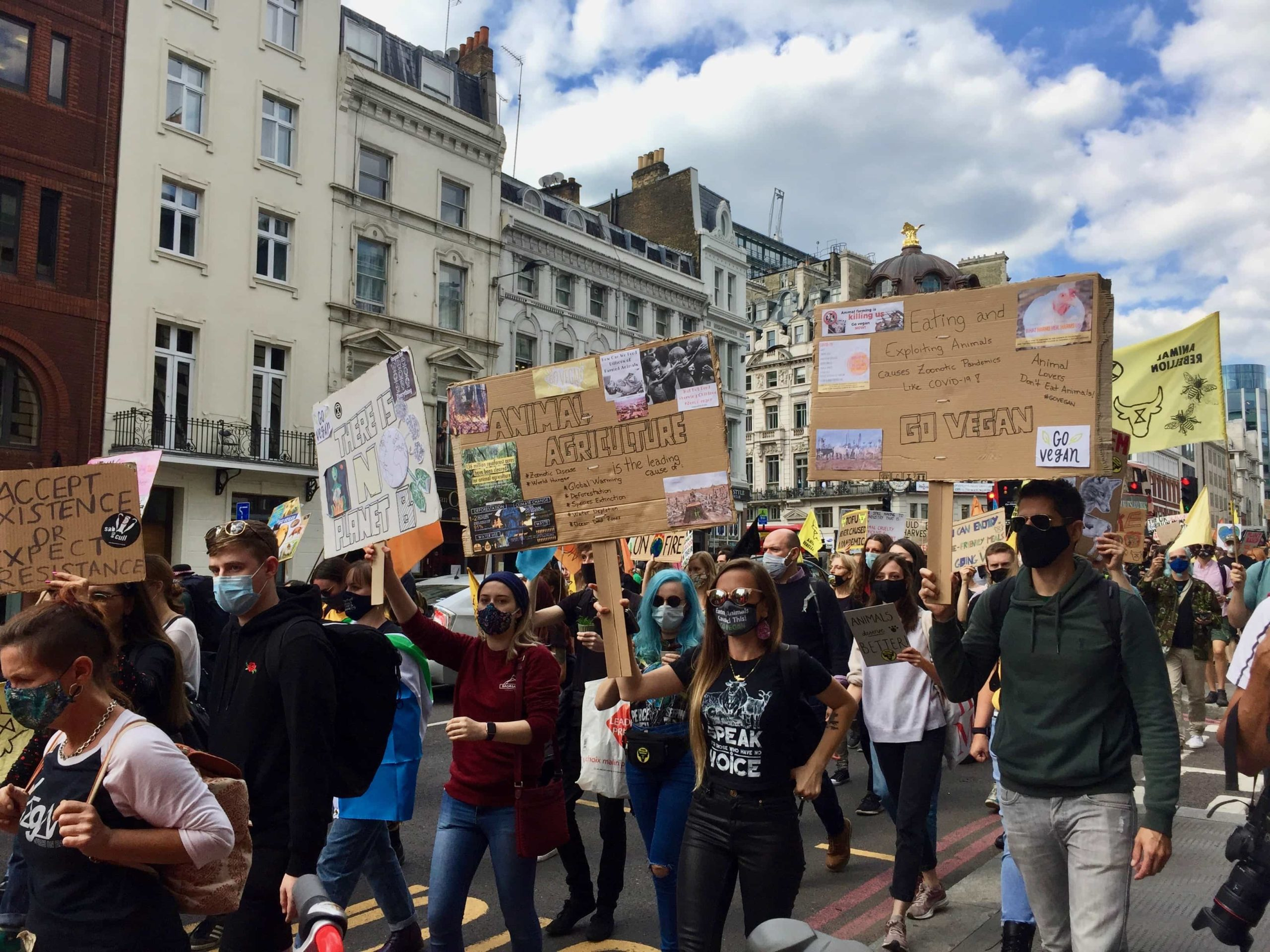 Marching to Parliament Square with Animal Rebellion, September 2020