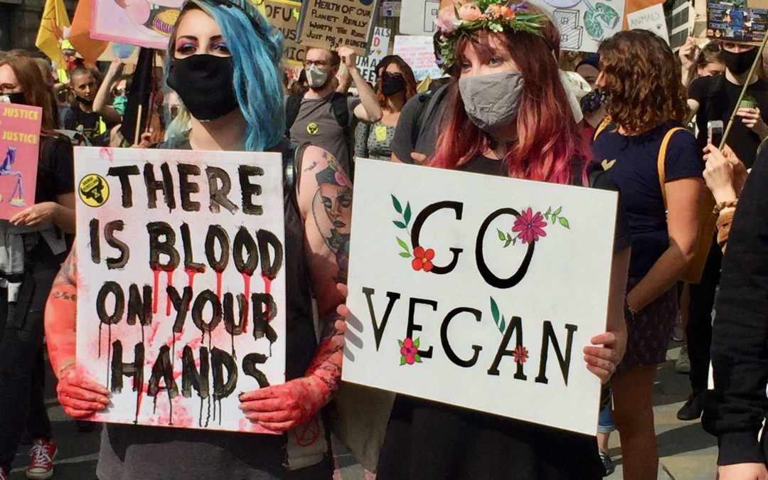 Animal Rebellion London launches a new wave of protests